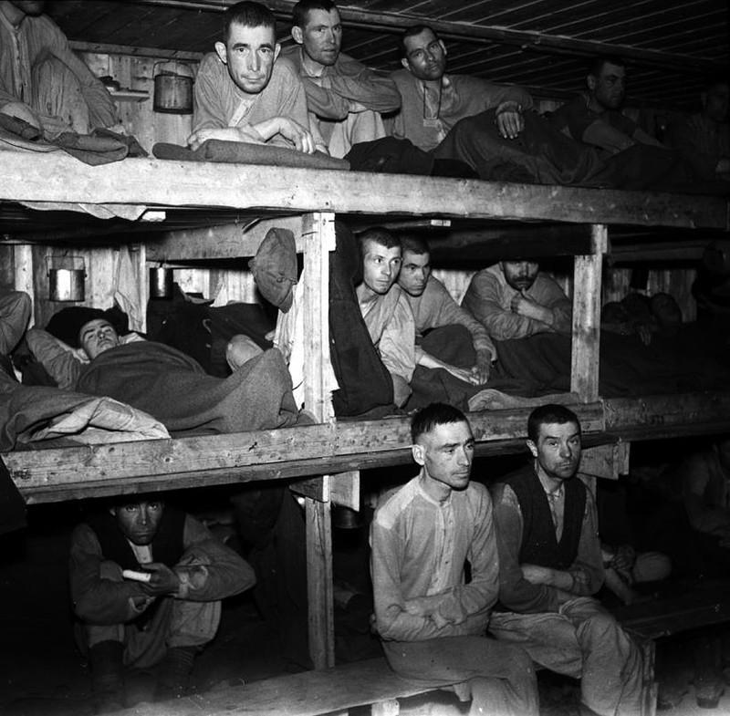 Освобождение от нацизма: Польша забыла, Норвегия помнит