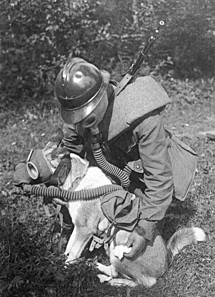Ипритовый лес и репрессии в РККА в 1937-38 гг.