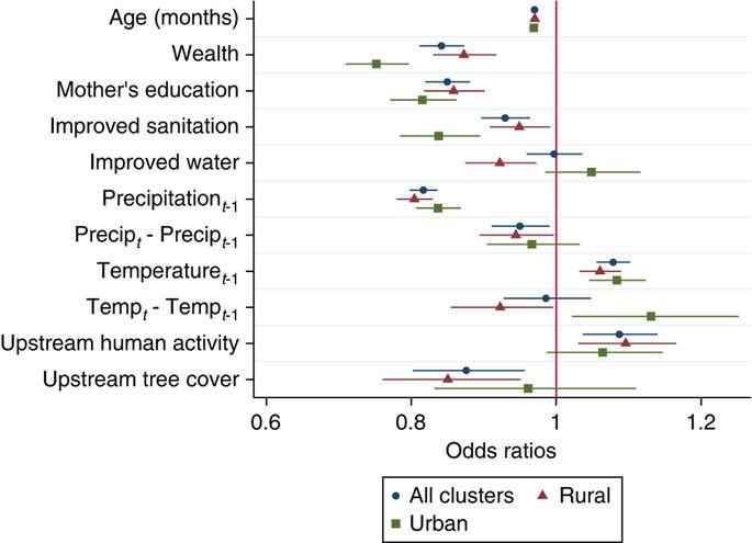Крупное исследование указало на связь количества лесов со здоровьем детей