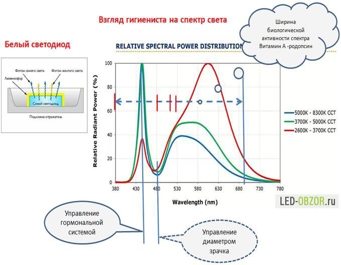 Рис. 1. Спектр света белого светодиода.