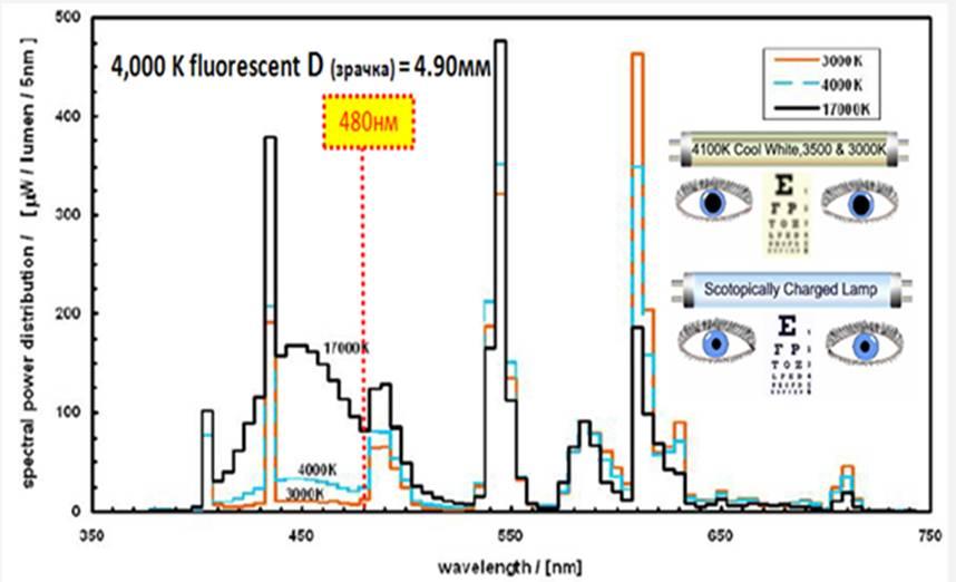 Рис.6. Спектры люминесцентных ламп с различными значениями коррелированной цветовой температуры.
